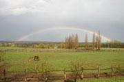 A tanya körül